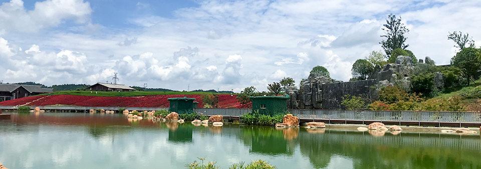 泰国风景网店设计